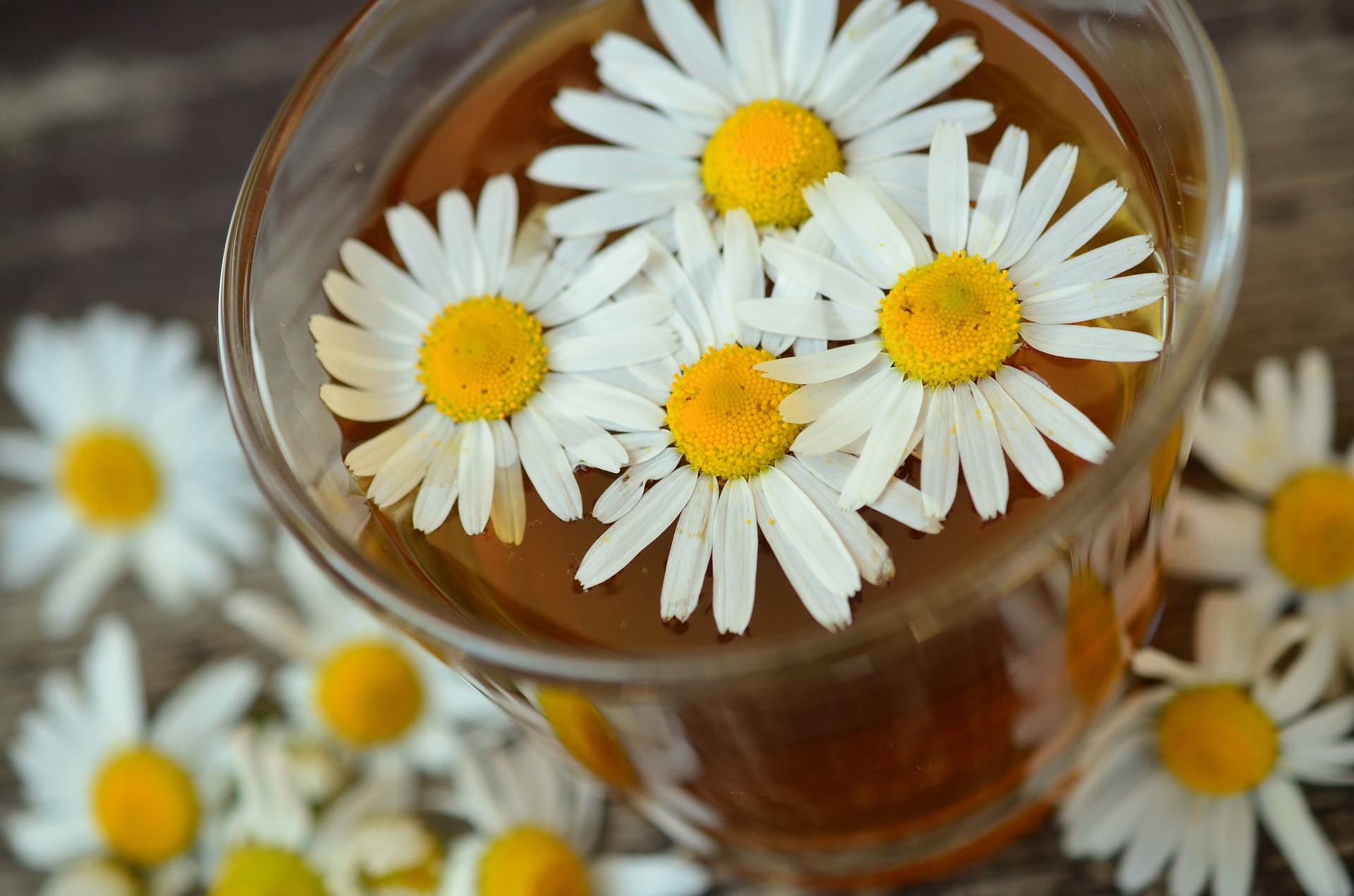 5 Amazing Organic Flower Teas picture